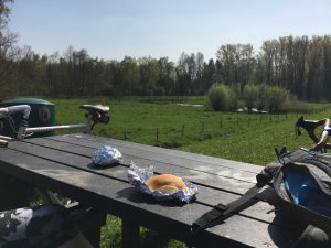 Cycling trip picnic alongside the Rupel river.